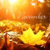 Novemberi programok Mórahalmon